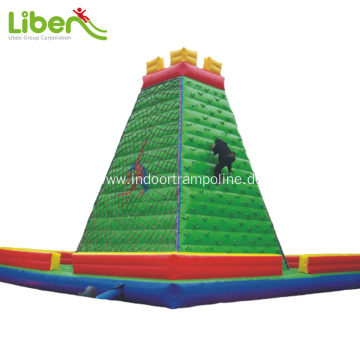 Big  inflatable bounce slide for kids